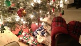 Acogedor por el árbol de navidad fotografía de archivo libre de regalías