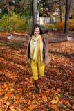Acoger con satisfacción otoño Imágenes de archivo libres de regalías