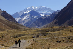 Free Aconcagua Royalty Free Stock Photo - 60171595