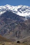 Aconcagua-Bergspitze mit klarem blauem Himmel argentinien Lizenzfreie Stockfotos