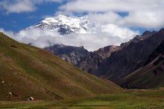 Aconcagua in nubi Fotografie Stock Libere da Diritti