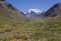 Aconcagua-Tal mit dem Aconcagua an der Rückseite Lizenzfreie Stockfotos