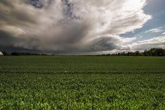 Acopio de tempestad de truenos Fotos de archivo libres de regalías
