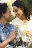Acople comer o vinho. Fotografia de Stock