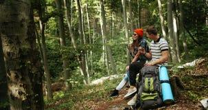 Acople dos turistas que relaxam na floresta video estoque