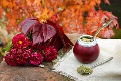 Acople el té en una calabaza en una tabla de piedra en el jardín Fotografía de archivo
