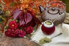 Acople el té en una calabaza en una tabla de piedra en el jardín Foto de archivo