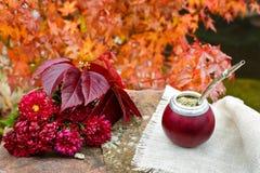 Acople el té en una calabaza en una tabla de piedra en el jardín Imagen de archivo