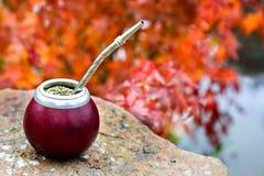 Acople el té en una calabaza en una tabla de piedra en el jardín Imagen de archivo libre de regalías