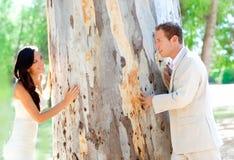 Acople feliz no amor que joga em um tronco de árvore Imagens de Stock Royalty Free