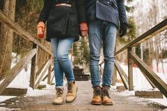 Acople guardar as mãos que estão em uma floresta do inverno em linha reta Fotografia de Stock