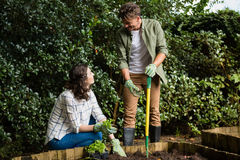 Acople a interação um com o otro ao jardinar no jardim imagem de stock royalty free