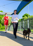 Acople o corredor com cão Imagens de Stock Royalty Free