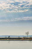 Acople os povos que montam uma bicicleta na distância perto do lago Imagem de Stock