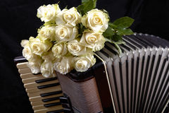 Acordeão do vintage e um ramalhete das rosas brancas Imagens de Stock Royalty Free