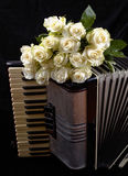 Acordeón del vintage y un ramo de rosas blancas Concepto de una música nostálgica Imagenes de archivo