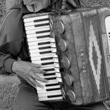 Acordeonista que joga o acordeão foto de stock royalty free