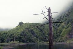 Acores; lagoa DAS patos auf flores Insel Lizenzfreie Stockfotografie