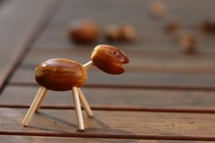 Acorn animal Stock Image