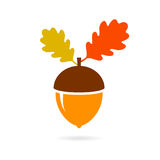Acorn autumn vector icon. Isolated on white background stock illustration