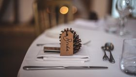 Acorn, Blur, Business, Cutlery Royalty Free Stock Photo