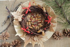 Acorn with christmast concept. Acorn with chrismas decoration on wooden plate Stock Photography