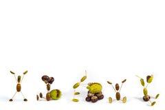 Acorn fellows set 1 3D illustration. Acorn fellows on white  background. Autumn raster illustration Stock Photos