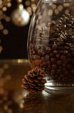 Acorn Holiday Background Stock Photography