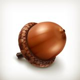 Acorn icon Stock Photo