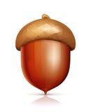 acorn ikona ilustracji