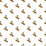 Acorn pattern. Seamless repeat in cartoon style vector illustration Royalty Free Stock Images