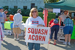 Acorn protester Royalty Free Stock Photos