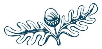 acorn rocznik royalty ilustracja