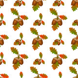 Acorn seamless pattern vector. Acorn seamless pattern autumn illustration. Seamless oak nature wallpaper design acorn pattern. Plant decoration season forest Royalty Free Stock Photo