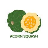Acorn squash icon  on white background, vector Royalty Free Stock Photos