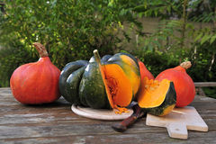 Acorn squash and orange Hokkaido pumpkins Royalty Free Stock Photos