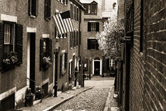 Acorn Street Royalty Free Stock Photography