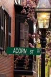 acorn ulica fotografia stock
