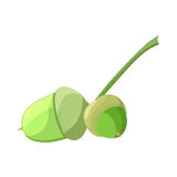 Acorn. Vector illustration in cartoon style. Royalty Free Stock Images