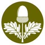 Acorn z liśćmi royalty ilustracja