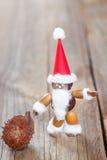acorns beechnuts kasztany Claus zrobili Santa Fotografia Royalty Free