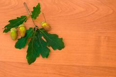 Acorns on a branch with oak leaves on a wooden background Stock Photo