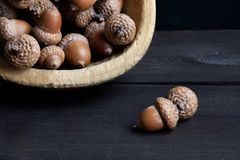 Acorns on brown wooden background Stock Image