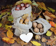 Acorns, chestnuts and walnut in bags  of autumn leaves with heart Royalty Free Stock Photo