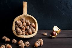 Acorns and  chestnuts on brown Royalty Free Stock Photos