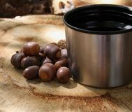 Acorns and Coffee. Several acorns next to a cup of coffee sitting on a cut section of a log Royalty Free Stock Photography