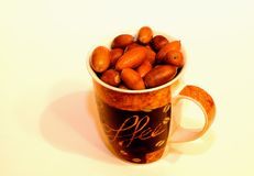 Acorns in the cup. Many acorns in the cup Royalty Free Stock Photography