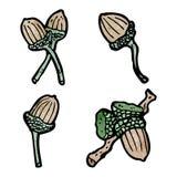 Acorns illustration Royalty Free Stock Images