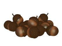 Acorns isolated on white background Stock Photo