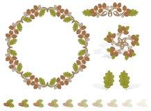acorns jesień projekta elementy Zdjęcia Royalty Free